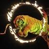 Цирки в Дуляпино